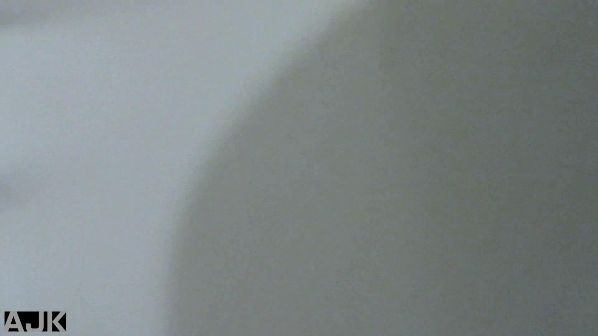 おまんこ|隣国上階級エリアの令嬢たちが集うデパートお手洗い Vol.01|怪盗ジョーカー