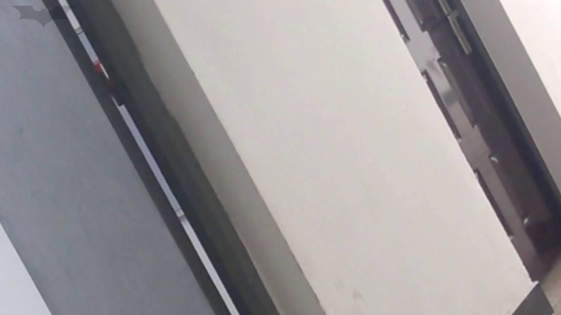 おまんこ JD盗撮 美女の洗面所の秘密 Vol.01 怪盗ジョーカー