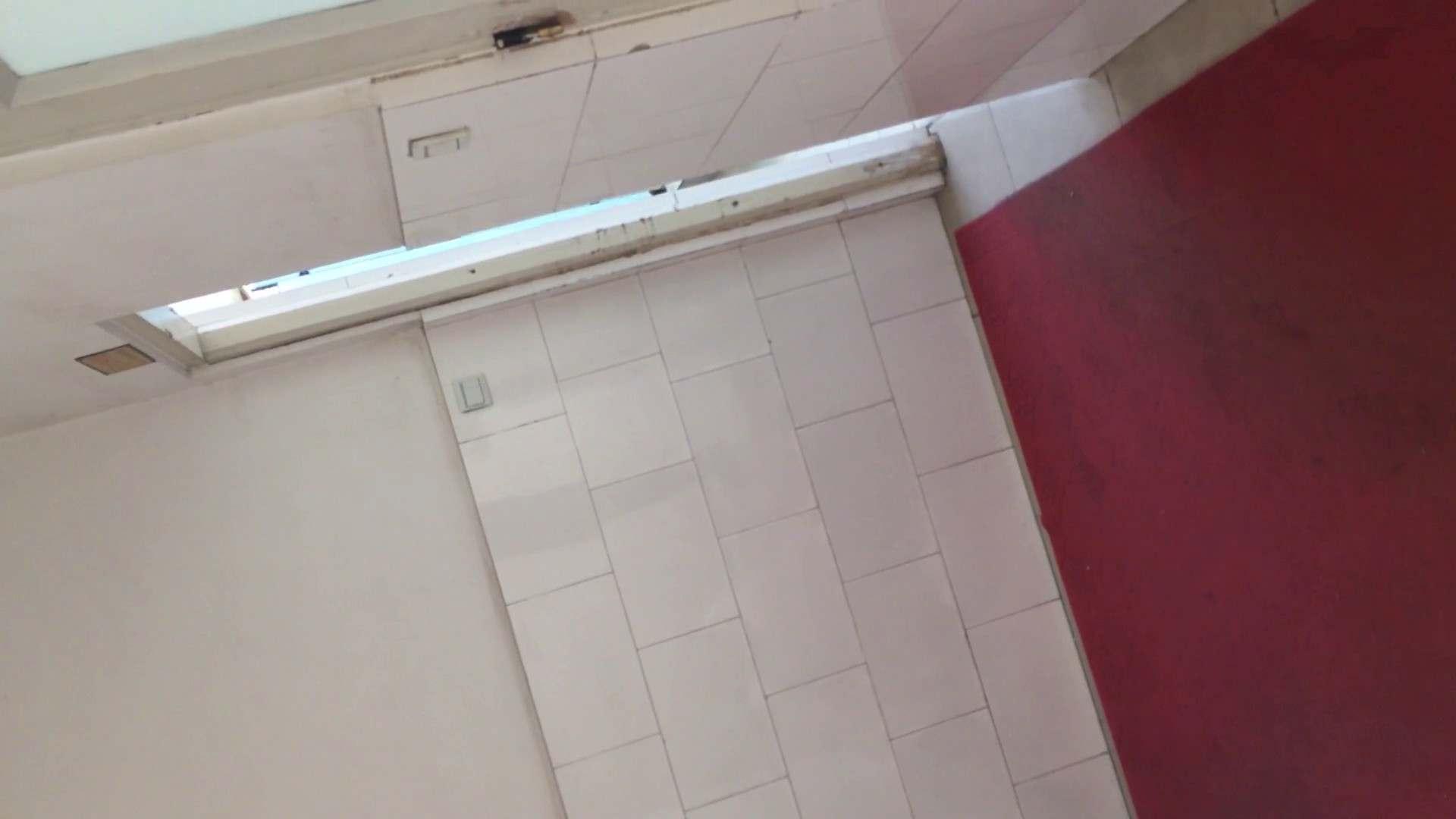 おまんこ|芸術大学ガチ潜入盗撮 JD盗撮 美女の洗面所の秘密 Vol.84|怪盗ジョーカー