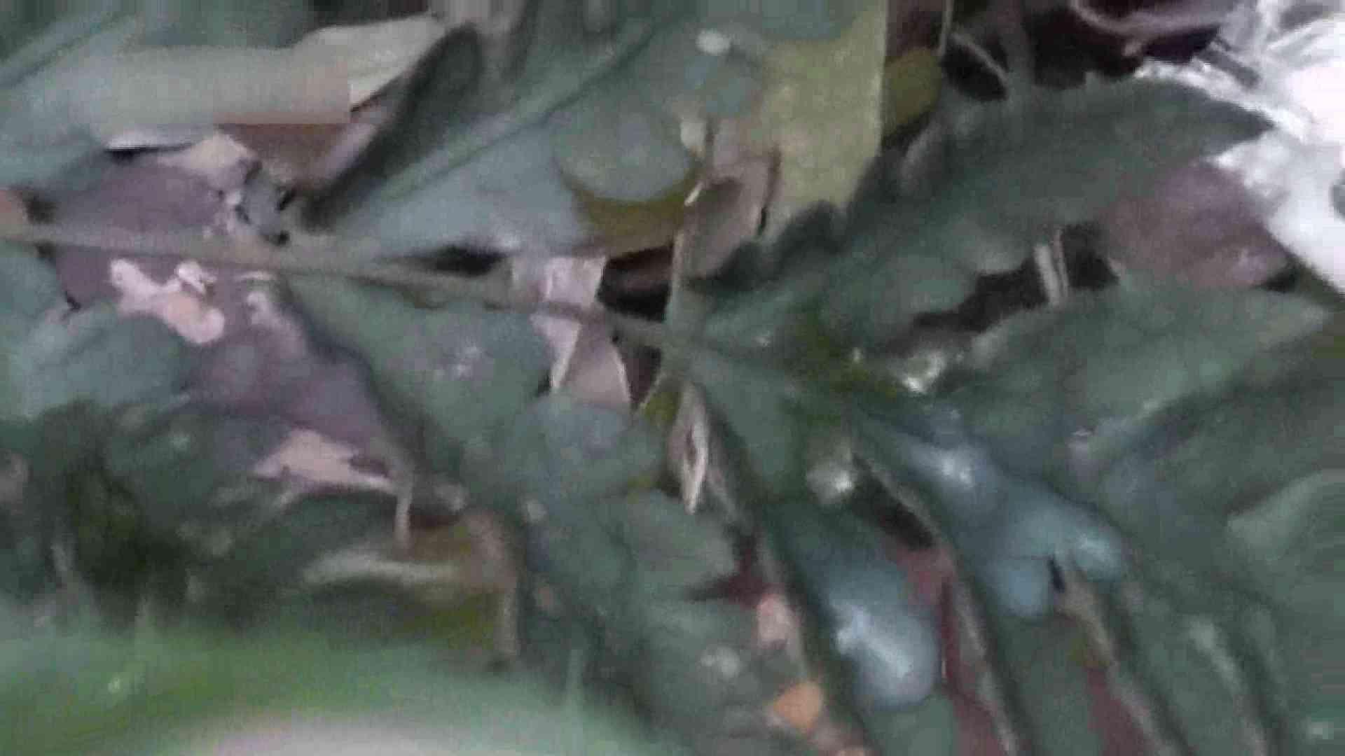 森林浴とオナニー 野外・露出 ゲイアダルトビデオ画像 92枚 20