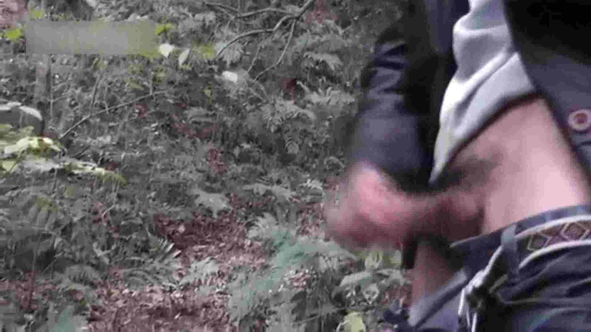 森林浴とオナニー 野外・露出 ゲイアダルトビデオ画像 92枚 90